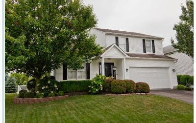 Single Family Home For Sale: 324 Western Dreamer Drive