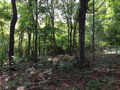 Chillicothe Residential Lots & Land For Sale: Black Run Road #5
