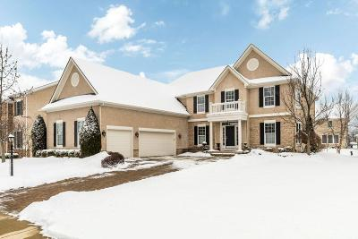 Powell Single Family Home Contingent Finance And Inspect: 4671 Village Club Drive