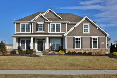 New Albany Single Family Home Contingent Finance And Inspect: 7442 New Albany Links Drive