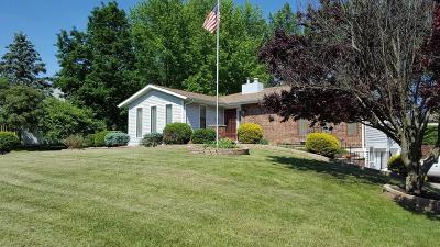 Pickerington Single Family Home For Sale: 13658 Nantucket Avenue