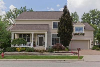 Powell Single Family Home For Sale: 7976 Coldwater Drive