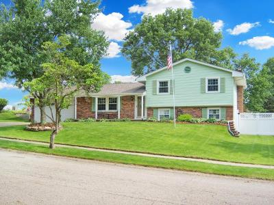 Mount Vernon OH Single Family Home Contingent Finance And Inspect: $189,900