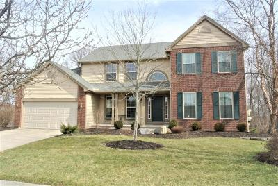 Newark Single Family Home Contingent Finance And Inspect: 2299 Vista Court