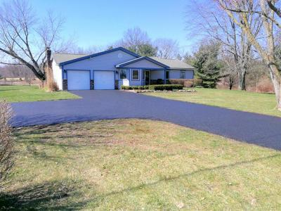 Union County Single Family Home For Sale: 9341 Industrial Parkway