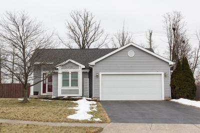 Hilliard Single Family Home For Sale: 3116 Hillrose Drive