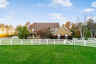Franklin County, Delaware County, Fairfield County, Hocking County, Licking County, Madison County, Morrow County, Perry County, Pickaway County, Union County Single Family Home For Sale: 1885 Dixon Road SW
