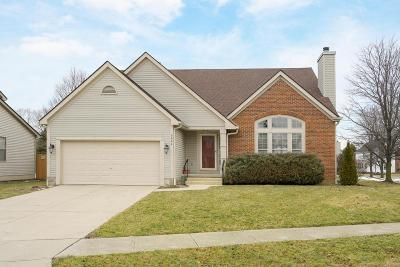 Hilliard Single Family Home For Sale: 5644 Hillcoat Drive