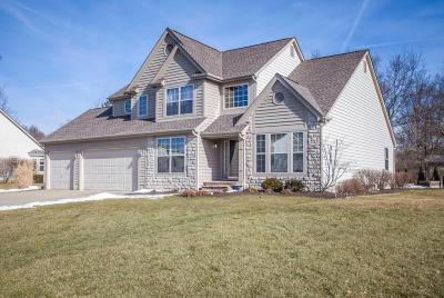 New Albany Single Family Home Contingent Finance And Inspect: 1770 Harrison Pond Drive