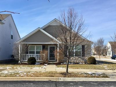 Dublin Single Family Home Contingent Finance And Inspect: 5589 Goose Falls Drive