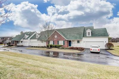 Johnstown Single Family Home For Sale: 642 Concord Village Circle