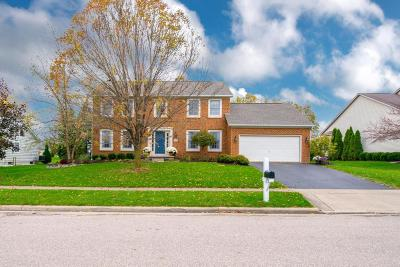 Powell Single Family Home Contingent Finance And Inspect: 9292 Wayne Brown Drive