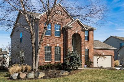 Westerville Single Family Home For Sale: 7591 Rolling Ridge Way