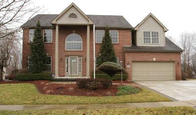 Powell Single Family Home For Sale: 5165 Willow Valley Way