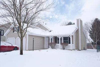 Hilliard Single Family Home For Sale: 4867 Leybourne Drive