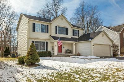 Franklin County, Delaware County, Fairfield County, Hocking County, Licking County, Madison County, Morrow County, Perry County, Pickaway County, Union County Single Family Home For Sale: 175 Thornapple Trail