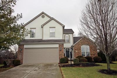Hilliard Single Family Home For Sale: 4884 Davidson Run Drive