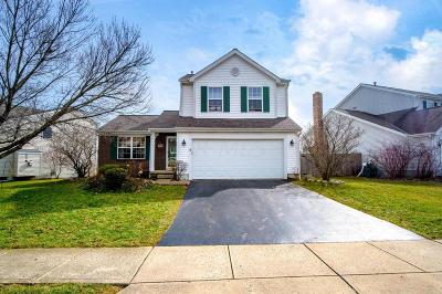 Hilliard Single Family Home For Sale: 5883 Privilege Drive