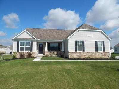 Franklin County, Delaware County, Fairfield County, Hocking County, Licking County, Madison County, Morrow County, Perry County, Pickaway County, Union County Single Family Home For Sale: 243 Long Trail