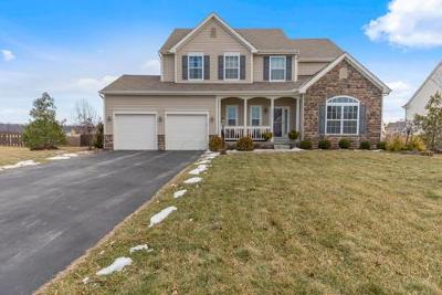 Galena OH Single Family Home For Sale: $409,900