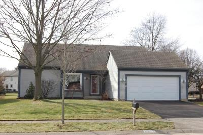 Columbus Single Family Home Contingent Finance And Inspect: 2319 Palmleaf Court