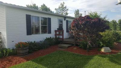 Single Family Home For Sale: 10164 Mougey Road SW