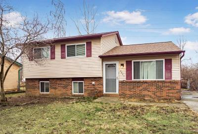 Columbus Single Family Home For Sale: 2826 Blarefield Drive