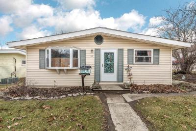 Delaware Single Family Home For Sale: 41 Flax Street