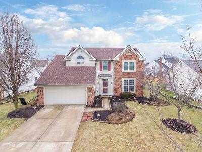 Canal Winchester Single Family Home For Sale: 7321 Old Creek Lane