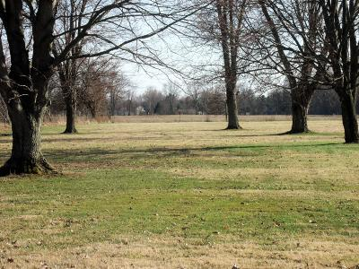 Pickerington Residential Lots & Land For Sale: Blacklick Eastern Road NW