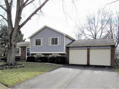 Dublin OH Single Family Home Contingent Finance And Inspect: $224,900