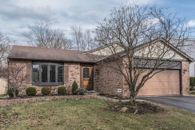 Columbus Single Family Home For Sale: 3600 Inverary Drive
