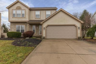 Grove City Single Family Home For Sale: 2405 Quail Meadow Drive