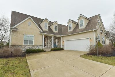 Powell Single Family Home For Sale: 8510 Trail Lake Drive