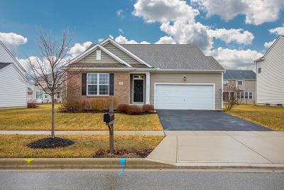Marysville Single Family Home For Sale: 580 Harness Drive