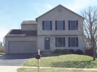 Lancaster Single Family Home For Sale: 1876 Pine Grove Place