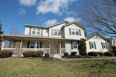 Powell Single Family Home For Sale: 154 Squires Court