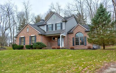 Newark Single Family Home For Sale: 1197 Brittany Hills E
