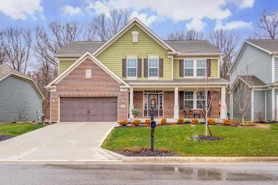 Hilliard Single Family Home For Sale: 3378 Woodland Drive