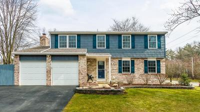 Westerville Single Family Home Sold: 8 Ormsbee Avenue