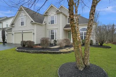 Powell Single Family Home For Sale: 4429 Scioto Parkway