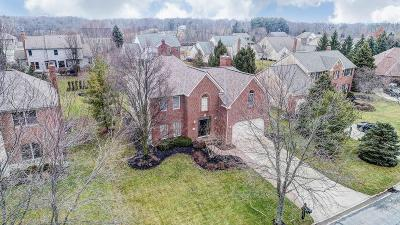 Powell OH Single Family Home Contingent Finance And Inspect: $417,500