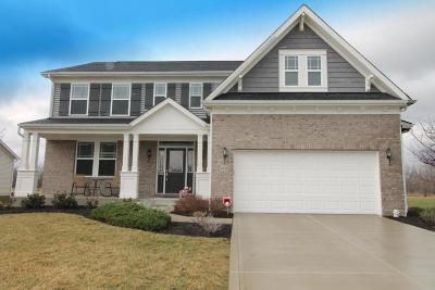 Canal Winchester Single Family Home For Sale: 6188 Dietz Drive