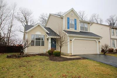 Hilliard Single Family Home For Sale: 2815 Pheasant Field Drive