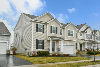 Westerville Single Family Home For Sale: 5900 Danann Drive