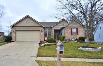 Blacklick Single Family Home Contingent Finance And Inspect: 181 Kingsmeadow Lane