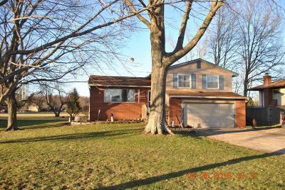 Single Family Home For Sale: 7290 Havens Corners Road