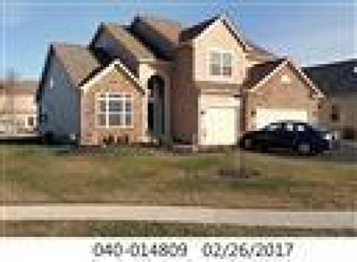 Grove City Single Family Home Contingent Finance And Inspect: 5570 Deergrass Court