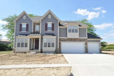 Dublin Single Family Home For Sale: 6484 Dicesare Loop #Lot 56
