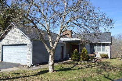 Delaware County, Franklin County, Union County Single Family Home For Sale: 6671 Mallard Court